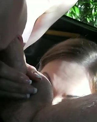 Two busty passengers share a hard dick